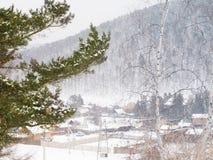 Firry snö förgrena sig på bakgrunden för vinterryssbyn Arkivfoto