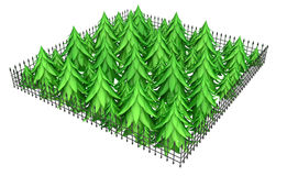 Firs Fence. Fir trees fence square 3d model isolated with white background Stock Photos