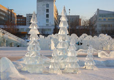 Firs in Ice town Royalty Free Stock Image