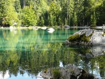 Firs and reflection on the green lake. Royalty Free Stock Photos