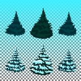 Set: Winter forest. Christmas trees in the snow. Eps 10 Vector. Royalty Free Stock Photo