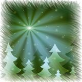 Firs and snowflakes Royalty Free Stock Photo