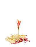 The first. A lot of matches on white  background. A match is lit Royalty Free Stock Photo