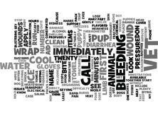First Aid For Puppies Text Background  Word Cloud Concept Stock Image