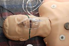 First-aid training dummy
