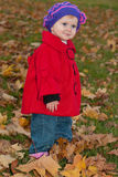 First autumn Royalty Free Stock Photo