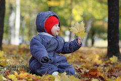 First autumn in my life Royalty Free Stock Image
