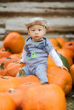 First Autumn Pumpkin Harvest Royalty Free Stock Images