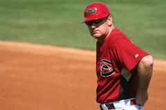 First base coach Matt Williams Stock Image