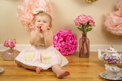 First Birthday Photoshoot Royalty Free Stock Image