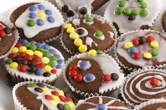 First chocolate muffins Stock Image