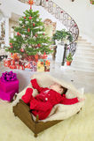 First Christmas Royalty Free Stock Images