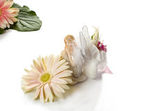 First Communion 7 Stock Photography