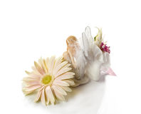 First Communion 7 Royalty Free Stock Photos