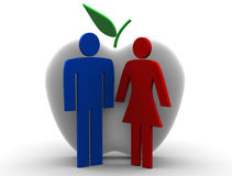 The First Creation. Adam and Eve withe apple Royalty Free Stock Images