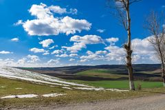 First day of spring landscape. Snow trees blue sky and puffy clouds stock photography