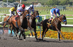 First Dude Wins The Hollywood Gold Cup. INGLEWOOD, CA - JUL 9: Jockey Chantal Sutherland hangs her head in disappointment after being nosed out at the finish of Royalty Free Stock Photo