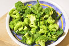First floor Raw broccoli. Raw broccoli ready for cooking, organic product from Italian agriculture Stock Photography