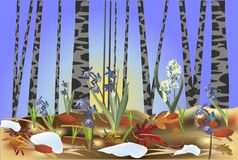 First flowers in spring forest illustration Royalty Free Stock Photo