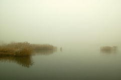 First Frost - Lake. Lake in Winter, Fog and Frost around royalty free stock image