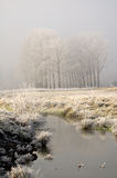 First Frost - Landscape. Beautiful scenery in Winter. Fog and frost, and the light of the rising sun royalty free stock images