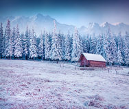 First frost in  mountain village. Royalty Free Stock Photos