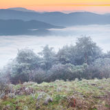 First frost in the mountains. Royalty Free Stock Image