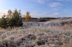 First Frosty Morning in the Countryside Royalty Free Stock Photography