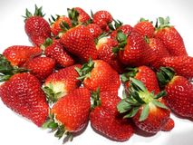 First fruits of strawberries Stock Photography