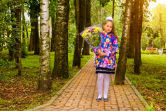 First grader, day of knowledge - 1. September. Little first-grader, girl-student goes to school on knowledge day 1. September. Student of elementary school in Stock Images