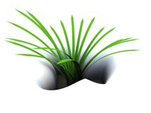 First grass. Abstract 3d illustration of first green grass in snow Stock Photos