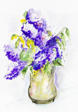 Impression  spring lilac. First impression of a magnificent bouquet of a spring lilac flowers - handmade watercolor  painting illustration on a white paper art Royalty Free Stock Photography