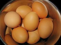 First ingredient. Eggs royalty free stock image