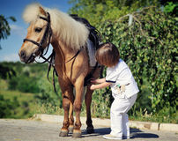 First lessons of horseback riding Stock Photography