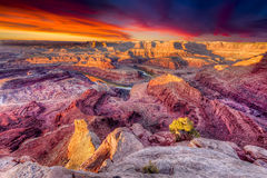 First Light at Dead Horse Canyon stock photography