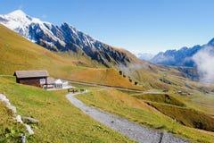 First Mountains , Switzerland. First Mountains Around Grindelwald, Switzerland Stock Photos