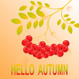 First November hello Autumn Background. Hello autumn!  Colored november leaves. Sketch, design elements. Vector illustration Stock Photography