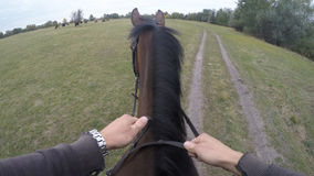 First person view of riding a horse. Point of view of rider walking at stallion at nature. Pov motion. Close up Stock Photo