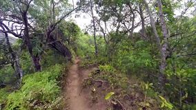 First person view of trail runner stock footage