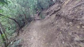 First person view of trail runner stock video