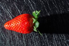 STRAWBERRY PROJECTING ITS SHADOW ISOLATED IN BACKGROUND WITH BLACK TEXTURES royalty free stock image