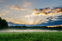 First rays over field and forest Stock Image