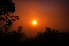 The first rays of the rising sun Royalty Free Stock Photos