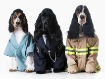 First responders Royalty Free Stock Photos