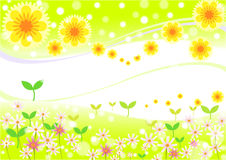 The first sign of spring. Flower decoration background, spriing, summer, autumn - eps10 illustration Stock Photo