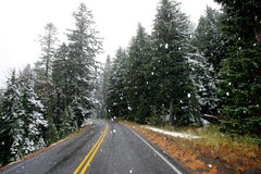First Snow. On mountain road in Oregon Royalty Free Stock Image