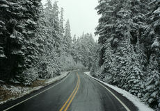 First Snow. On mountain road in Oregon Stock Photos