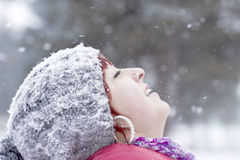 The first snow Stock Photography