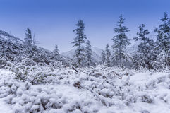 The first snow on abrupt hills Royalty Free Stock Image