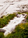 First snow in Alps touristic region. Fresh green meadow with rapids stream. Peaks of Alps mountains in background. Stock Photography
